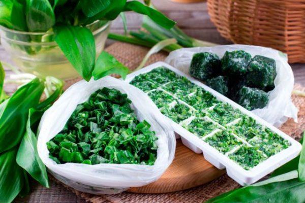 Замораживание зелени как способ хранения